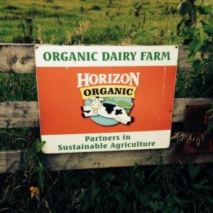 Organic Dairy Sign